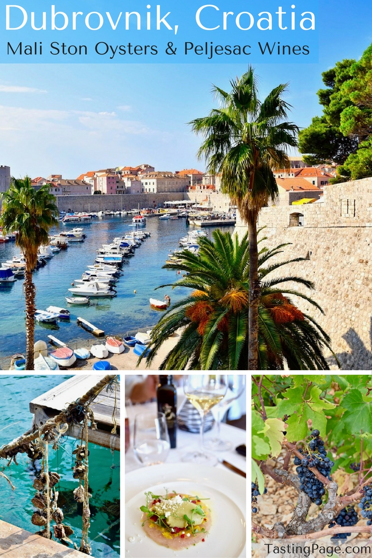 Dubrovnik Croatia - Tasting Mali Ston Oysters and Peljesac Wine | TastingPage.com