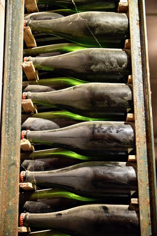 Old wine bottles.jpg