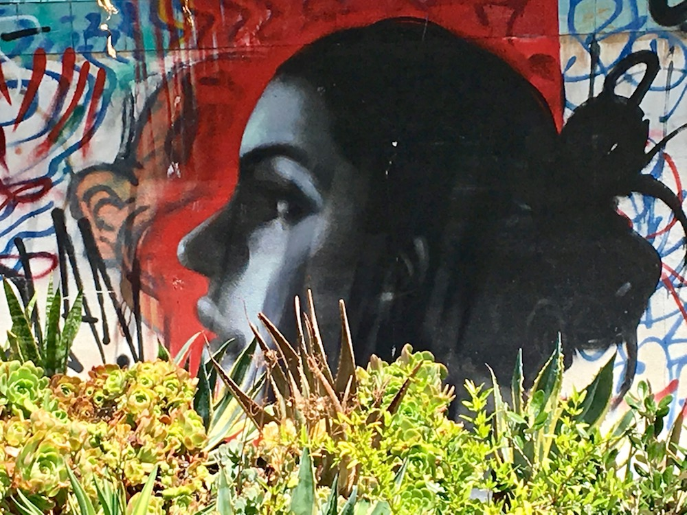 Gangsta Gardener art.jpg