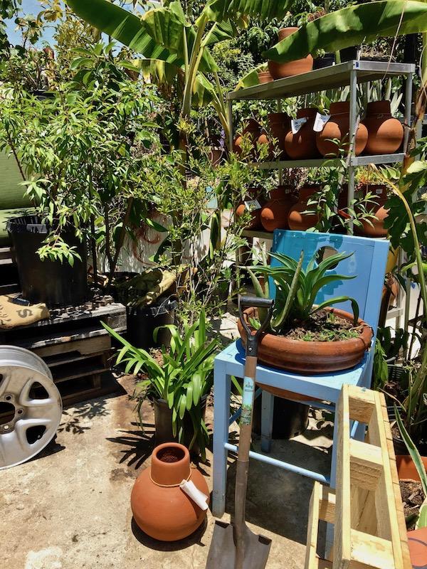 Gangsta Gardener tools.jpg
