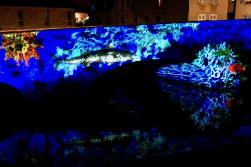 Light Show Chartres water.jpg