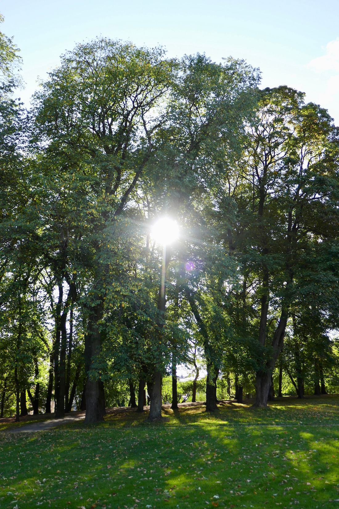 quiet time in nature for balanced healthy living