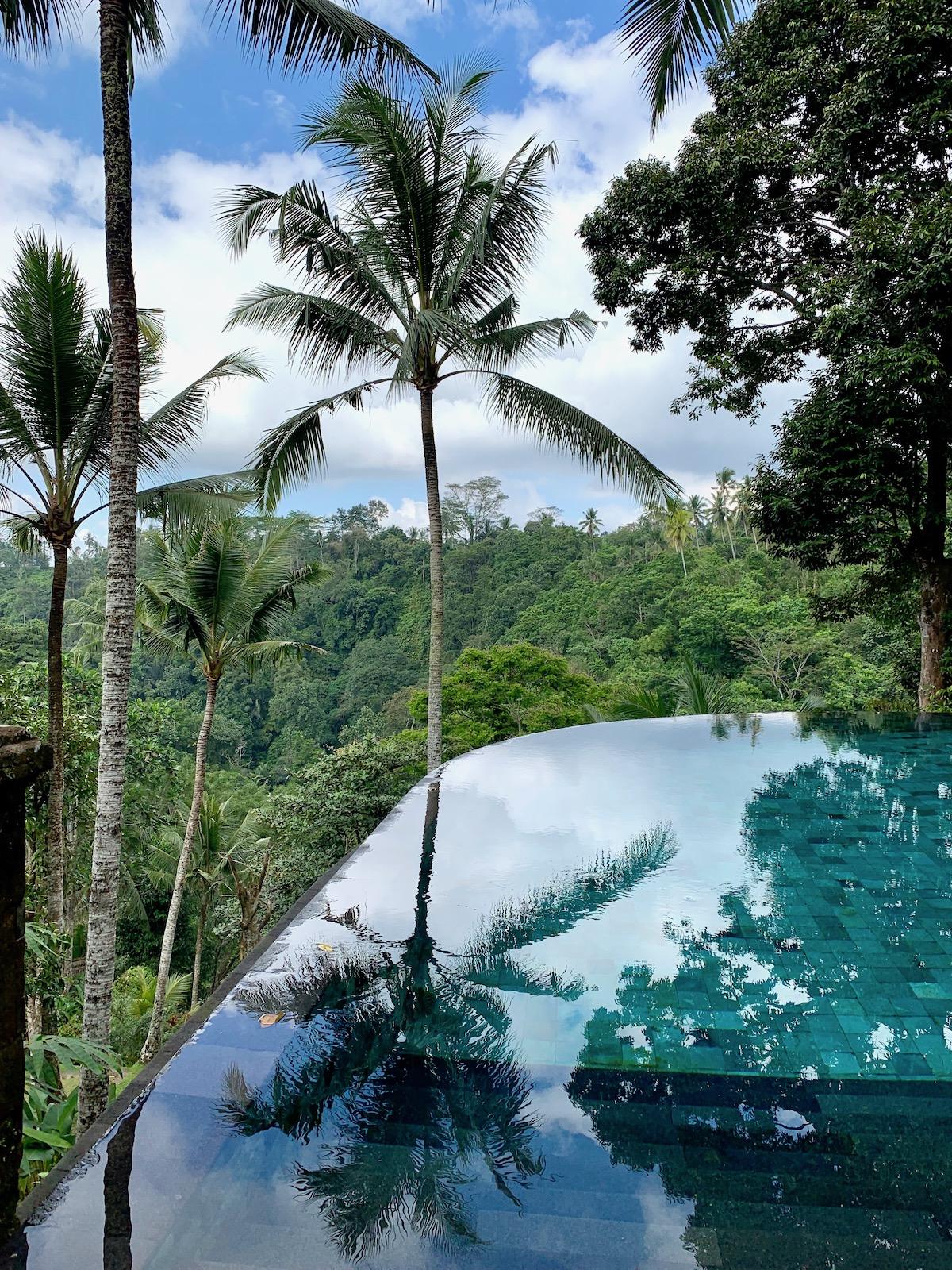 Como Shambhala pool jungle.jpeg