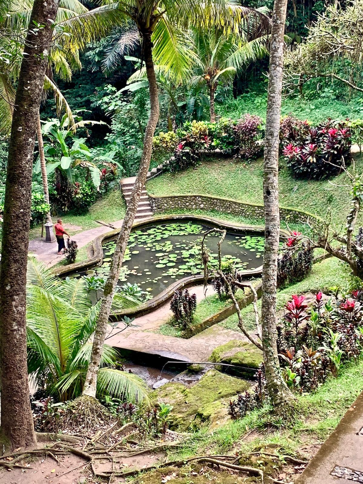 Goa Gajah pond.jpeg