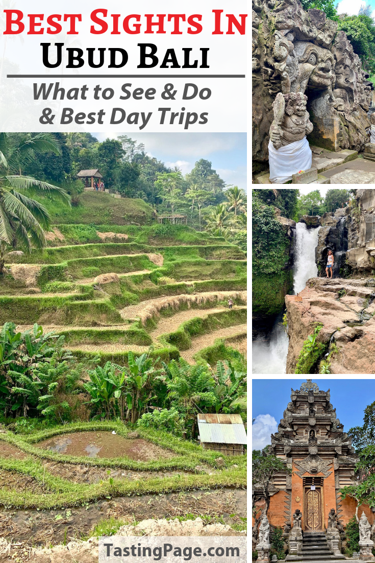 The best sights and things to do in Ubud Bali, and the best day trips from Ubud | TastingPage.com #ubud #bali #travel #indonesia #guide #sightseeing
