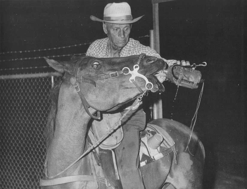 Wendell & Nugget at the end of the ride in 1961 ~ Charlie Barieau photo.