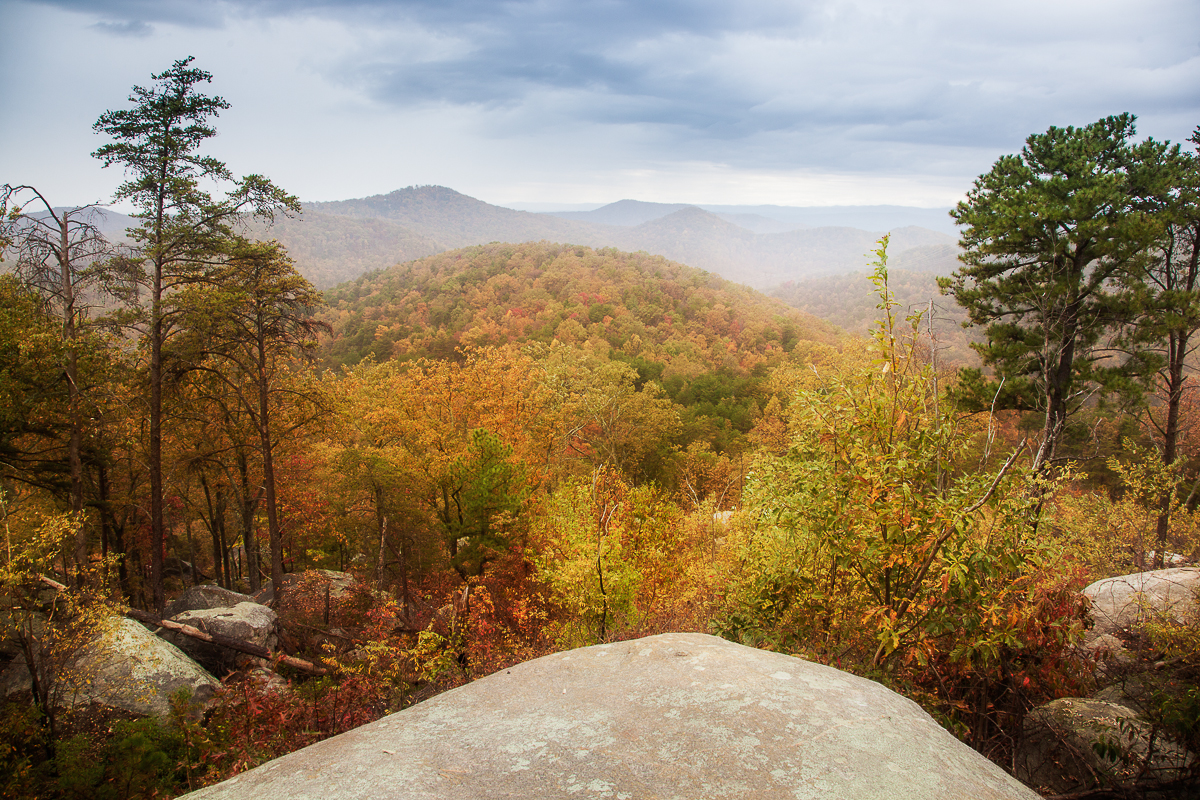 The view from Big Rock Mountain in Nine Times Forest - Photo by Mac Stone