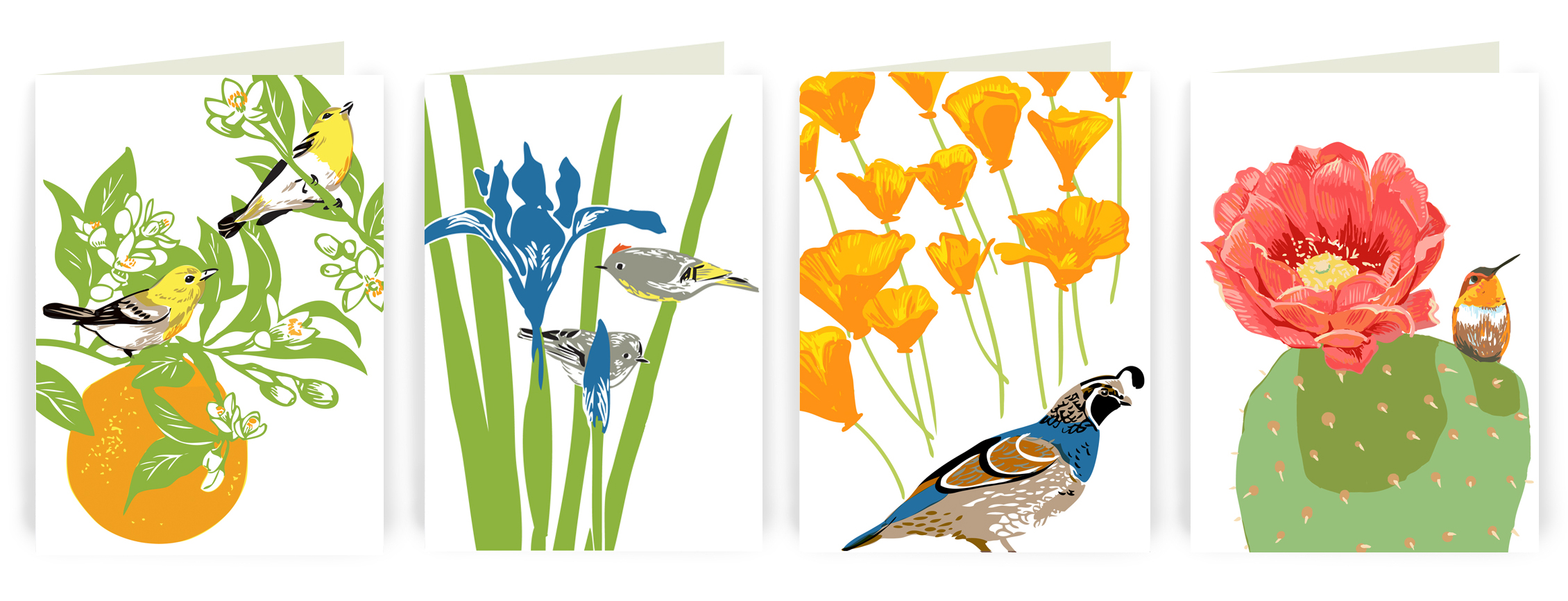 FEATURED PROJECT: Birds and flowers