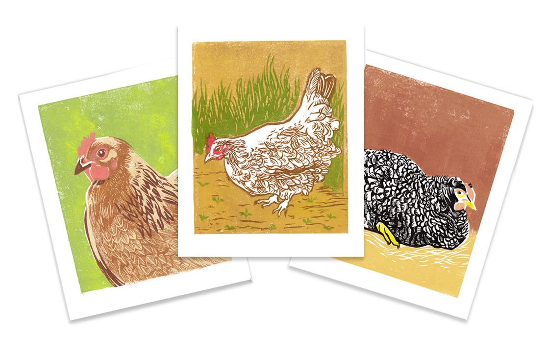 3-chicks-horiz2.jpg