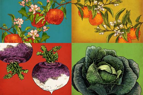 small-vegetables.jpg