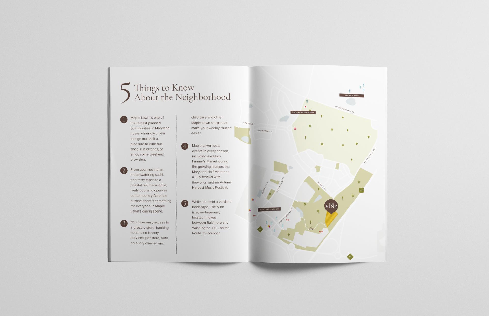 TheVine_brochure_spread_02.jpg