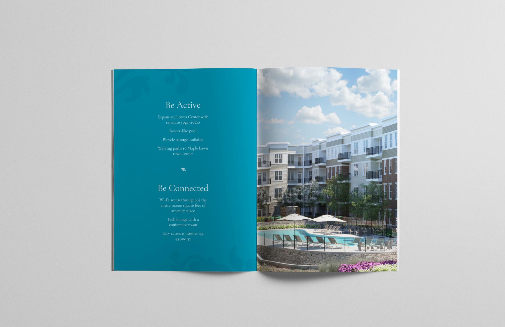 TheVine_brochure_spread_04.jpg