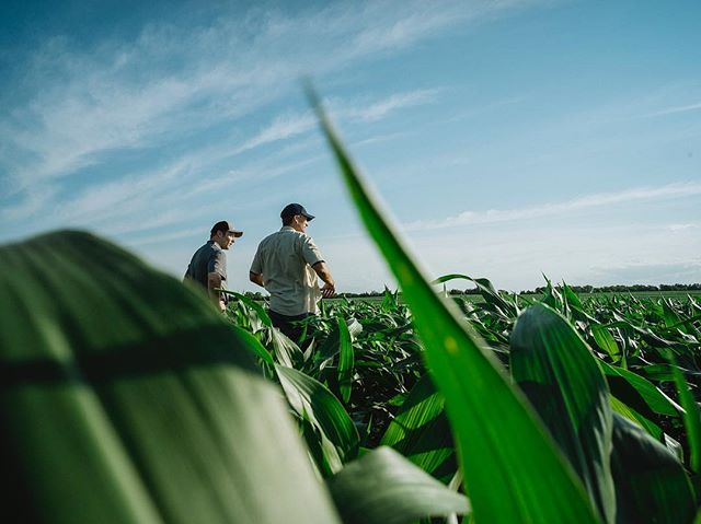 Happy #nationalfarmersday to all the hardworking men and women out there. . . Syngenta x Nebraska pt2 #4