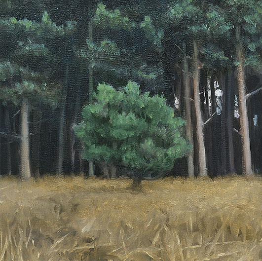 Myth I: This is the Place - John Brennan, 2012, oil on canvas, 20 x 20 x 4 cm