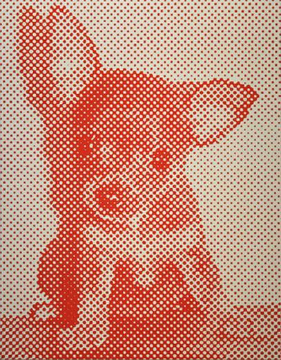 Red Chihuahua