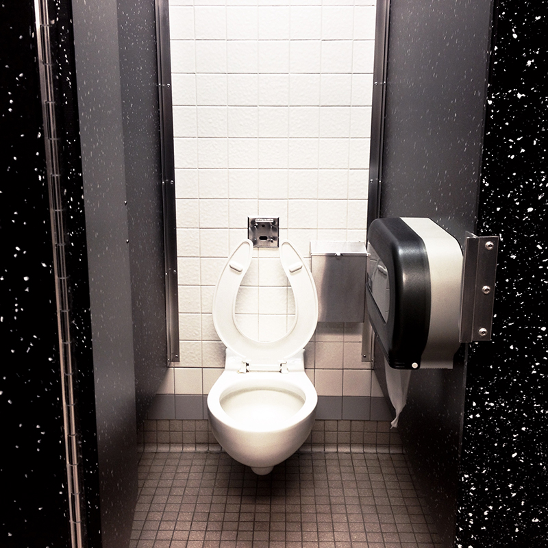 I was really fixated on this toilet. Rest area - NY
