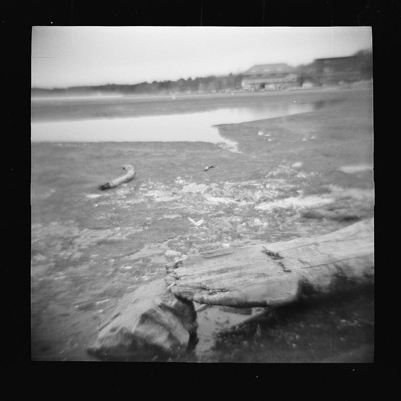 Burlington, VT - 120 film in Diana F+