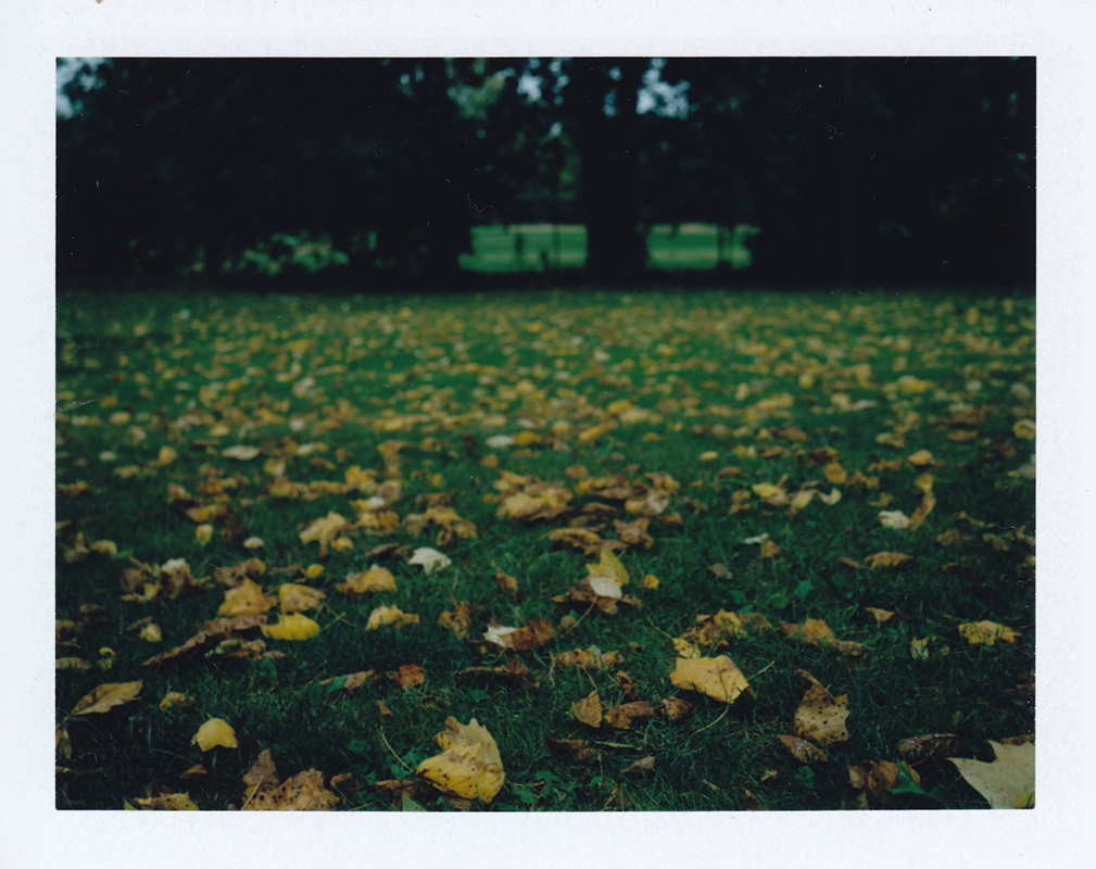FujiFilm FP-100C in Polaroid 100 Land Camera