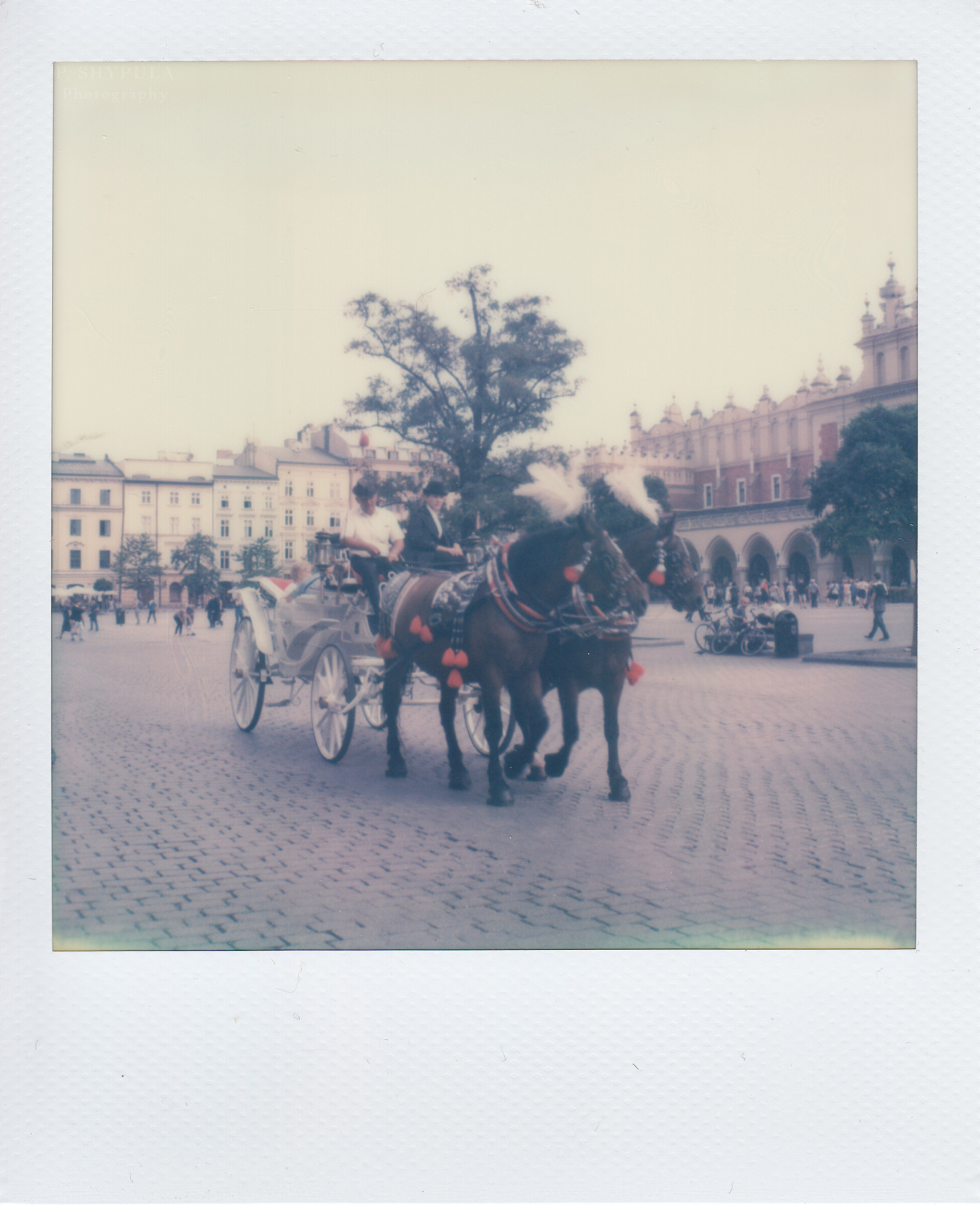 Horse drawn carriage in Krakow