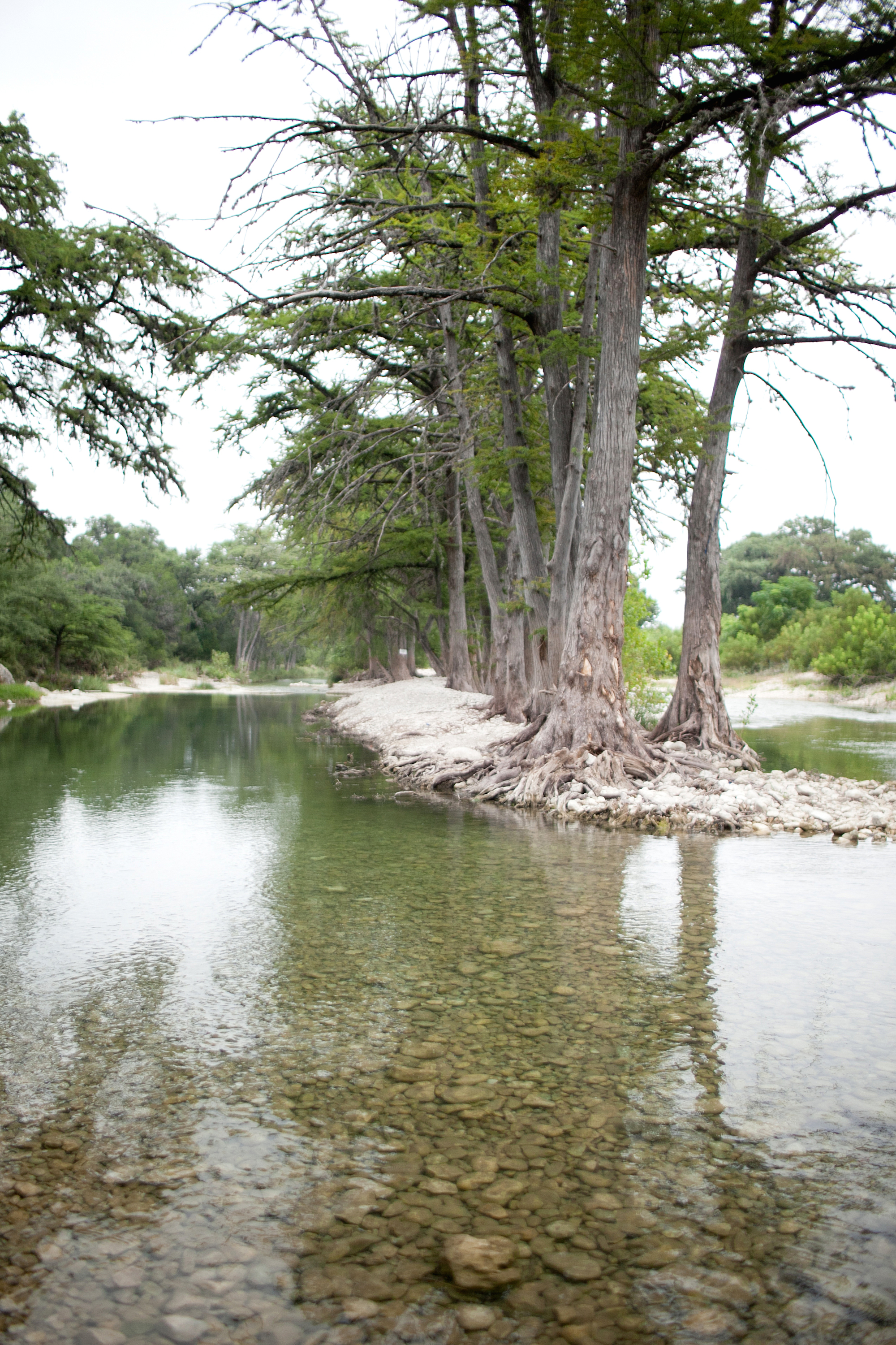 kate stafford photography | leakey, tx