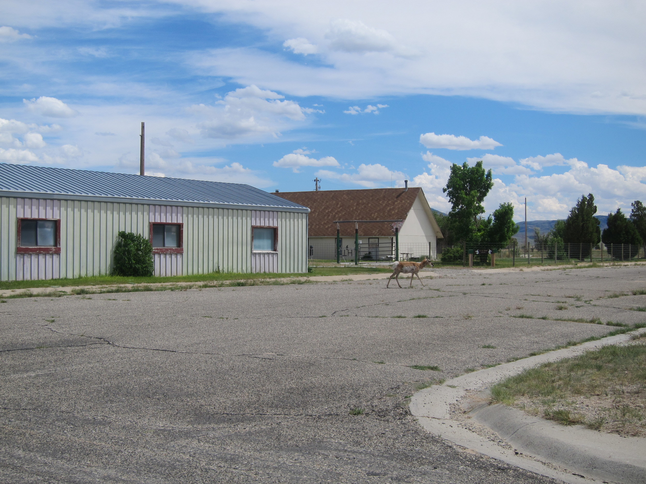 Jeffrey City. All boarded up and deer running the 'town'.