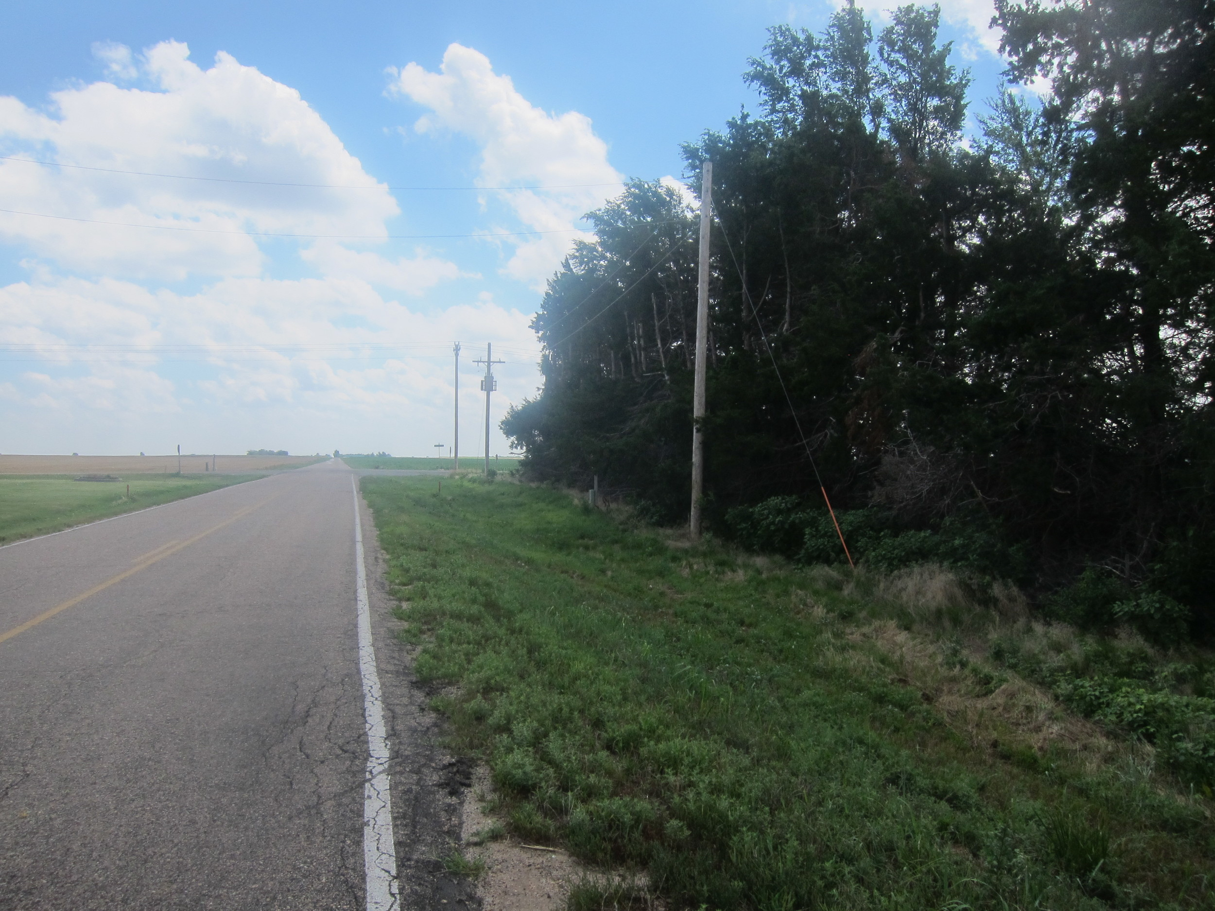 You get really excited about weird things in Kansas. Like, trees on your right that block the wind coming up from the south. It means you can cycle more efficiently for those 500 yards or so...