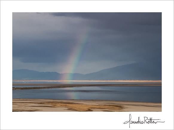 Rainbow, Antelope Island State Park