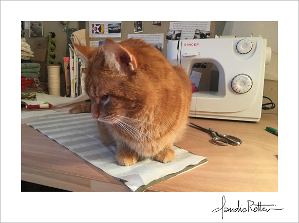 Cat on sewing table