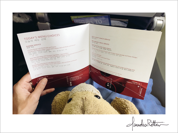 Airplane menu