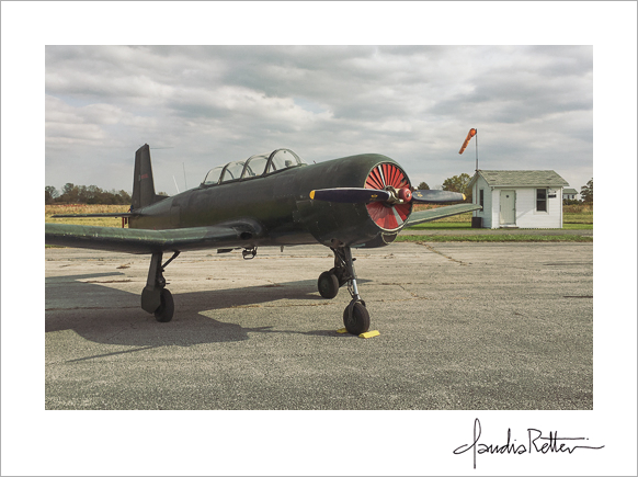 Nanchang CJ6 at North Bass Island