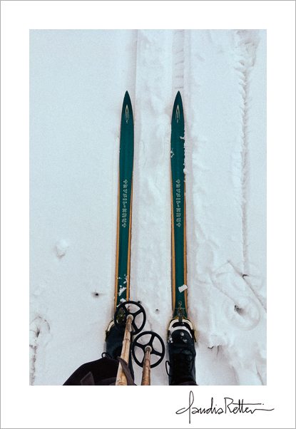 My cross-country skis