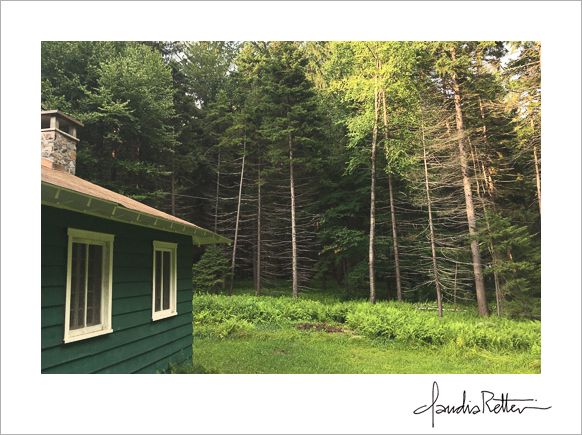 Green cabin in the woods