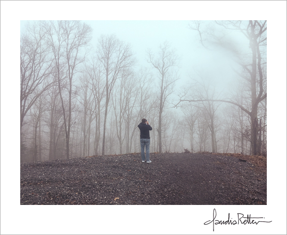 Fairview Forest fog