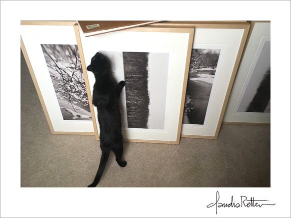 Miss Hazel with photographs