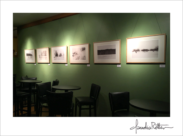 Claudia Retter's  Velvet Winter  exhibit at the Meadowlark Restaurant