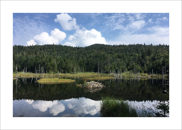 long-trail-vermont-claudia-retter-1.jpg