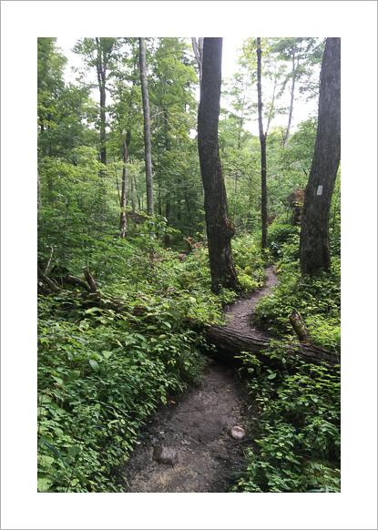 long-trail-vermont-claudia-retter-2.jpg