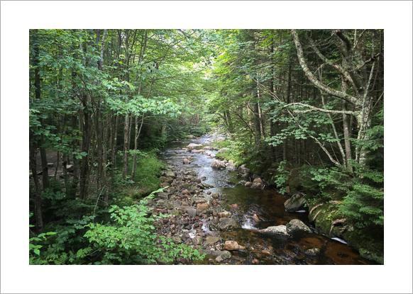 long-trail-vermont-claudia-retter-4.jpg