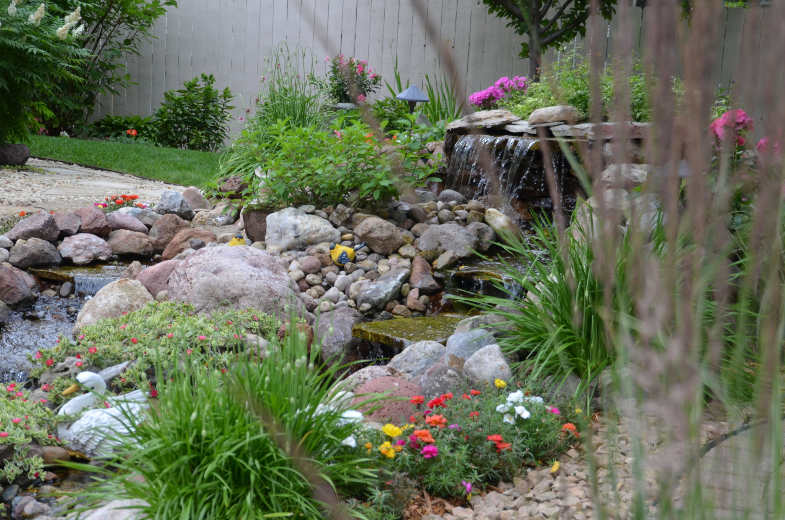 Maple Grove Garden Tours