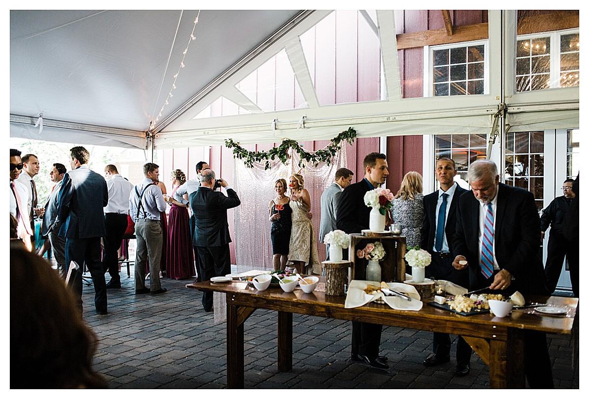 York_pa_Wyndridge_Farms_Wedding_erinelainephotography_0977.jpg