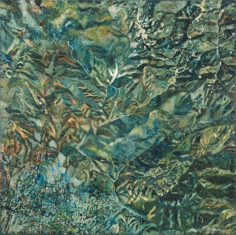 LAS PRESAS DE HUAYAPAM (THE DAMS OF HUAYAPAM), 2001