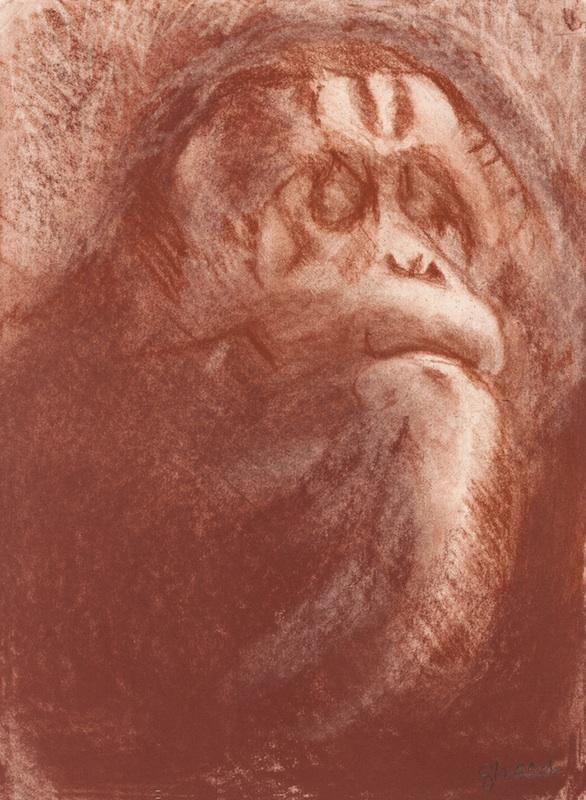 LA VIEJA PERSONA DE LA SELVA (THE OLD PERSON OF THE FOREST), 2006