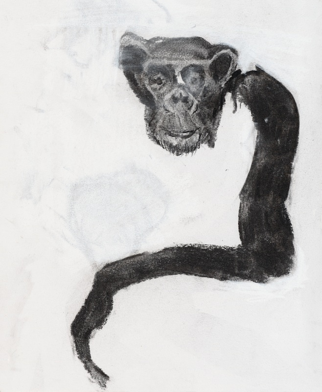 BRAZO LARGO (LONG ARM), 2007