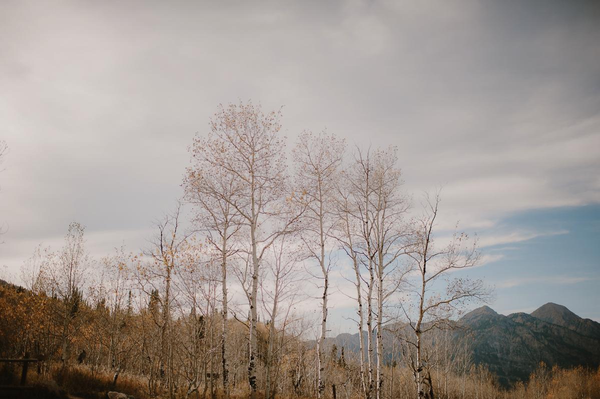 UtahWeddingElopementPhotographer_KristenMarieParker-128.jpg