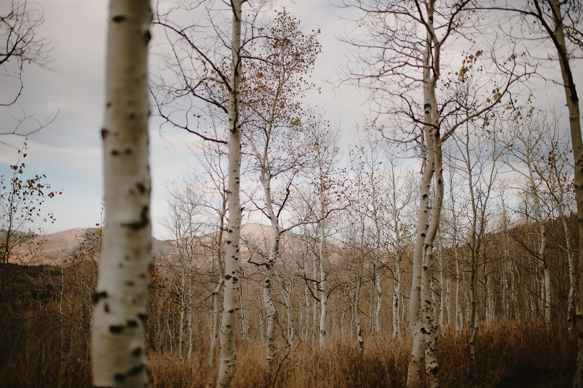 UtahWeddingElopementPhotographer_KristenMarieParker-181.jpg