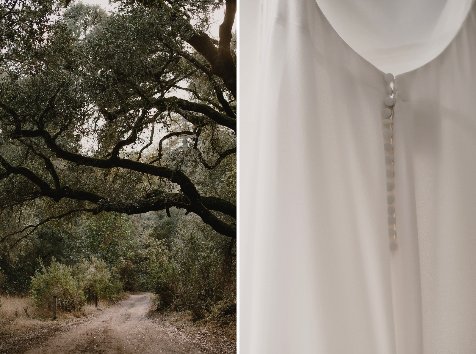 Santa_Lucia_Preserve_Fall_Forest_Wedding000.JPG