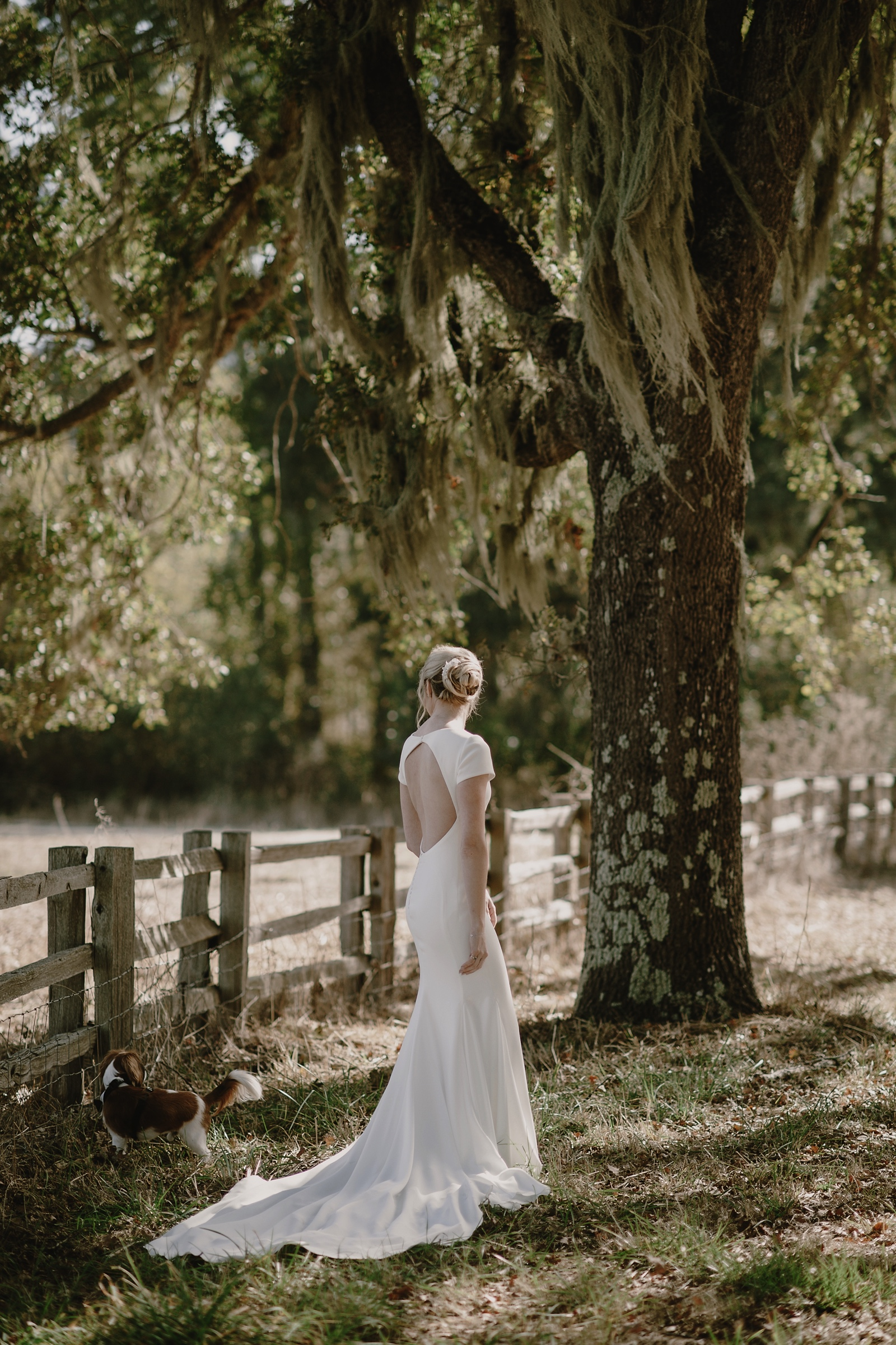 Santa_Lucia_Preserve_Fall_Forest_Wedding025.JPG