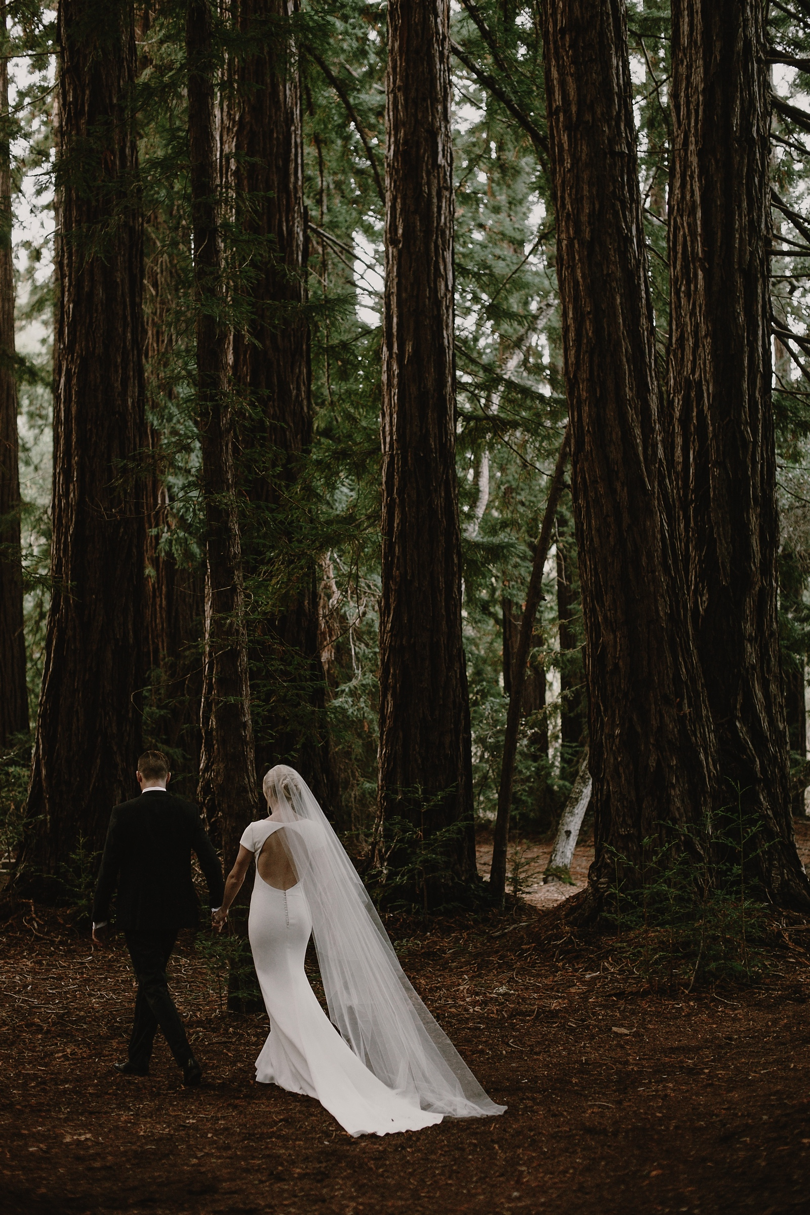 Santa_Lucia_Preserve_Fall_Forest_Wedding064.JPG