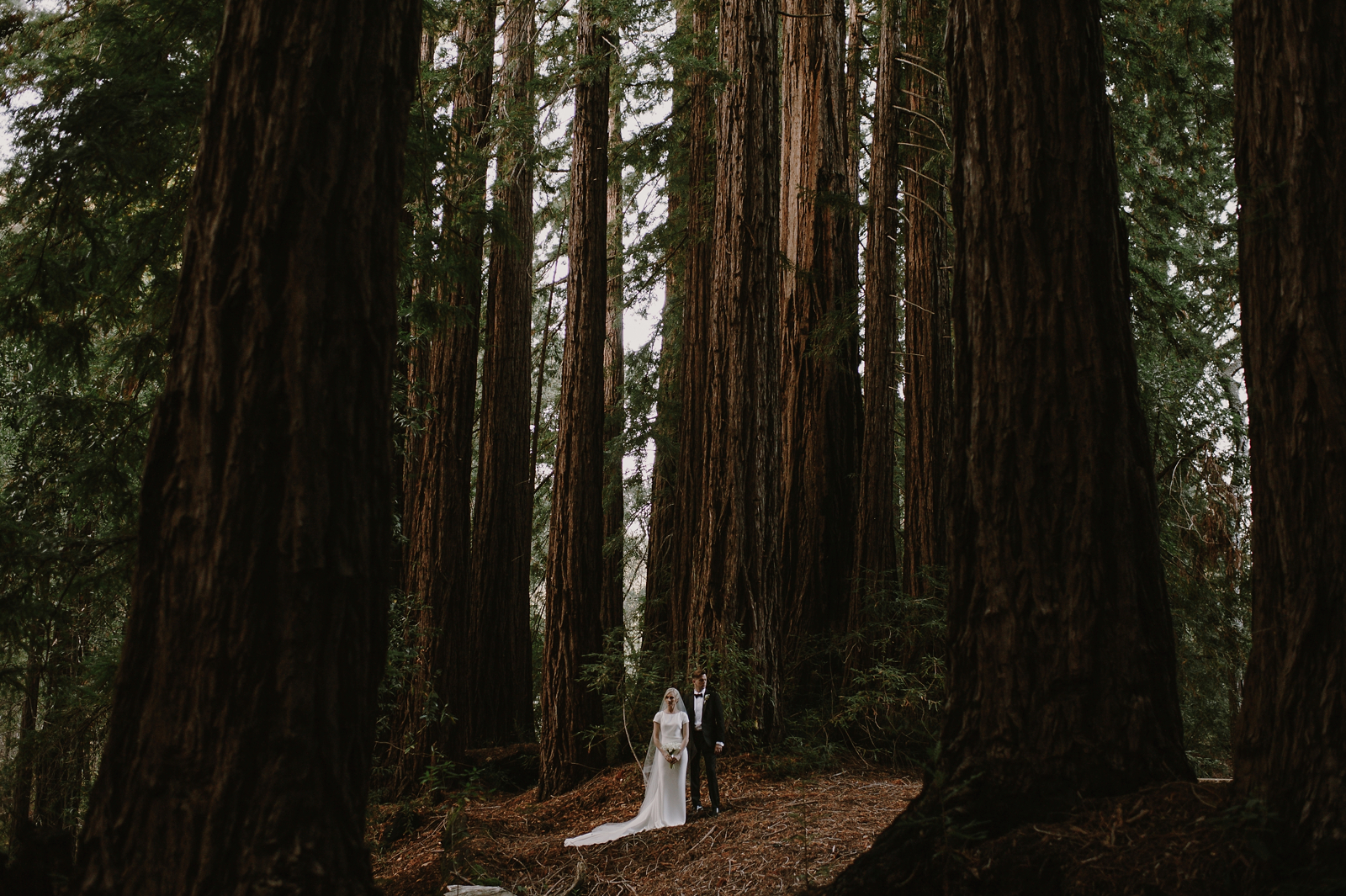 Santa_Lucia_Preserve_Fall_Forest_Wedding065.JPG