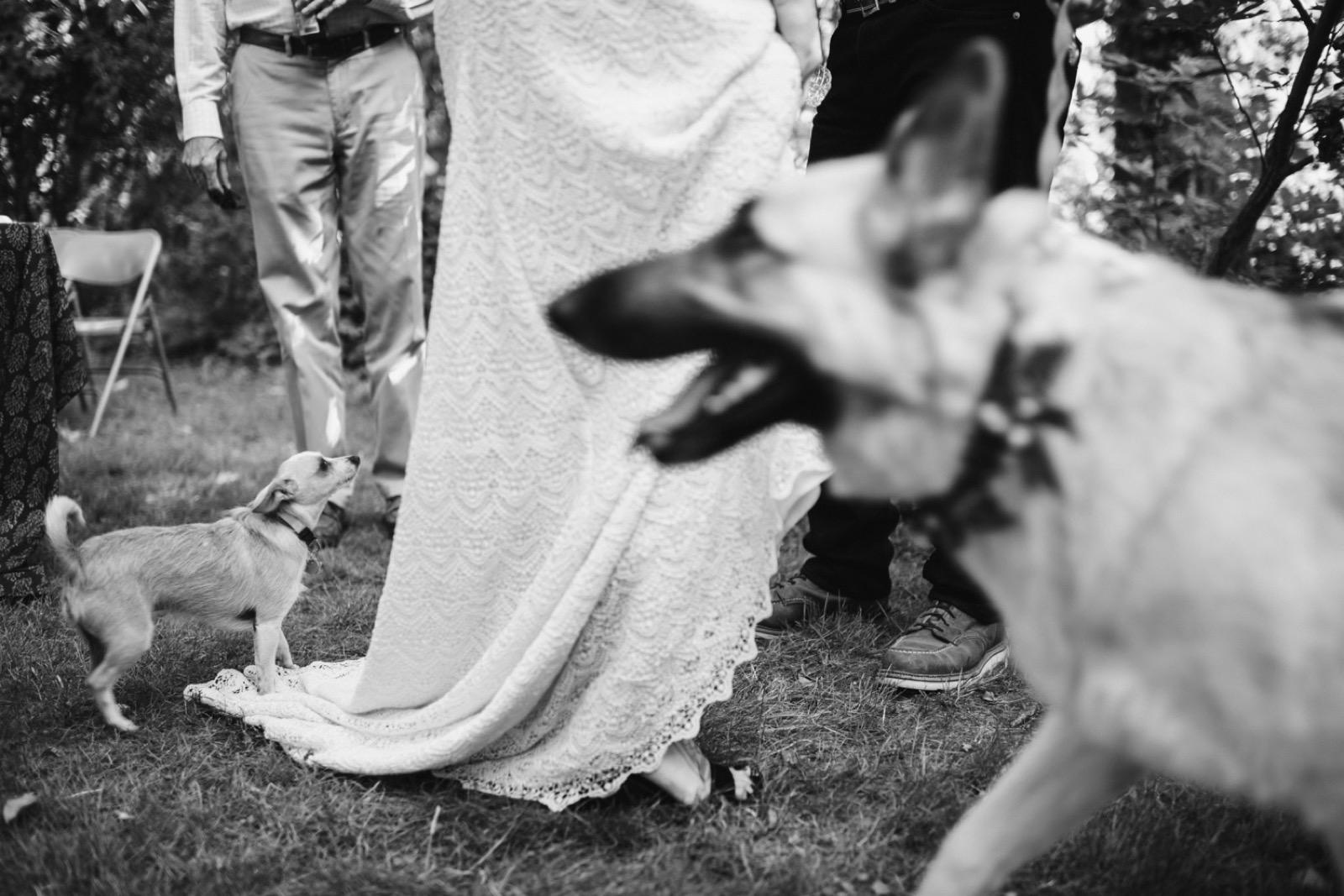 061_California_Ranch_Wedding164.jpg